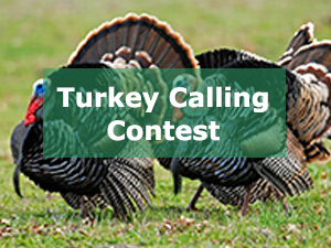 Turkey Calling Contest